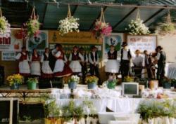 falunap2005 009